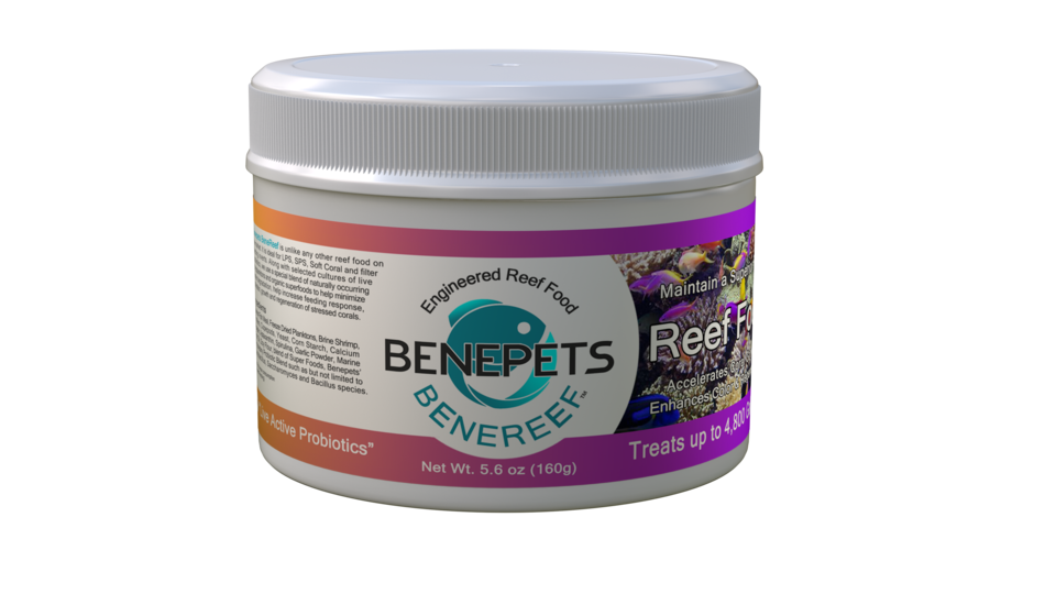 Benepets BeneReef Coral and Fish food
